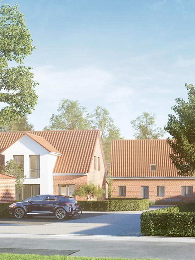 3D-Visualisierung - Hybridenergiehaus - Projektentwicklung - Doppelhaus