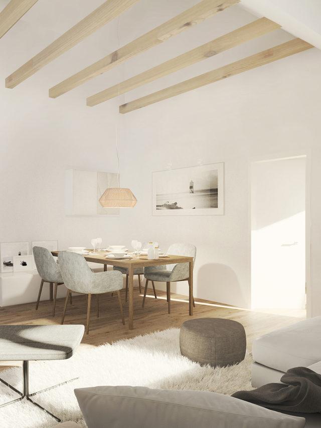 Mehrfamilienhaus - Perspektive Innenraum - Skandi-Stil